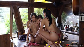 Naughty chicks show off in marvelous lesbian XXX scenes