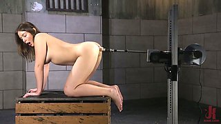 Insatiable babe Blair Williams is testing different sex toys and new fucking machine